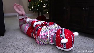 hogtied for the holidays