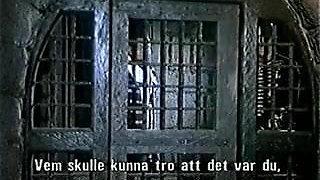 Erotic Adventures of Zorro (1996)