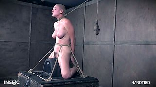 Big tittied skinhead Riley Nixon is tied up and punished by one perverted dude