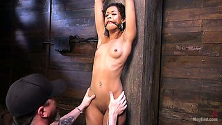 Flexible and svelte black MILF Skin Diamond gets tied up and treated hard
